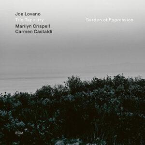 Trio Tapestry: Joe Lovano