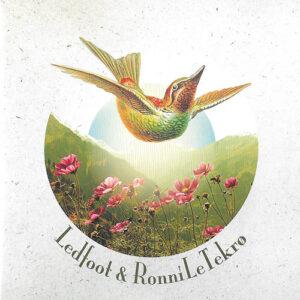Ledfoot & Ronni LeTekro