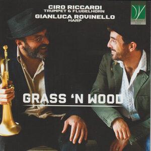 Ciro Riccardi & Gianluca Rovinello