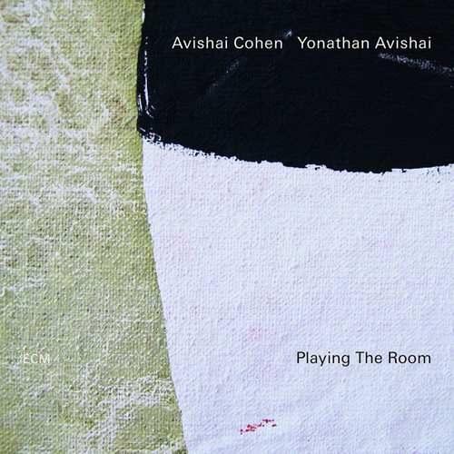 cohen avishai plaing the room